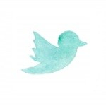 Twitter @karamariedan